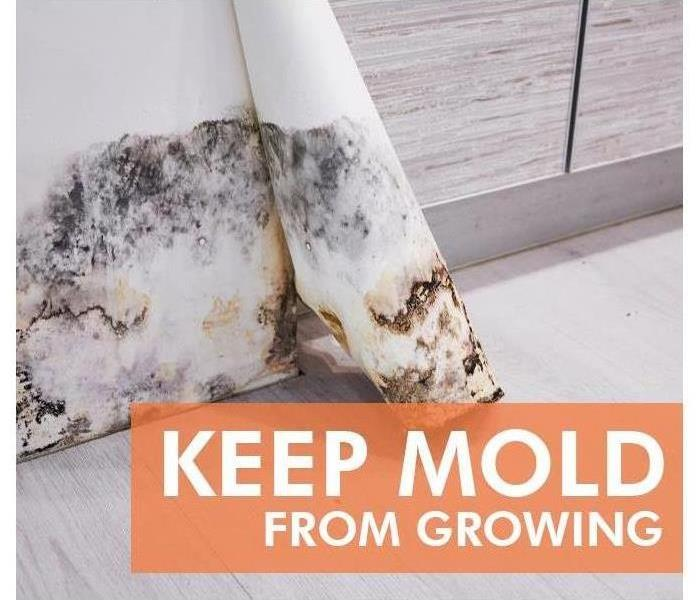 Keep mold from growing; mold on wall.