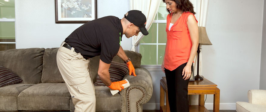 Sylmar, CA carpet upholstery cleaning
